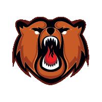HC Kuznetskie Medvedi