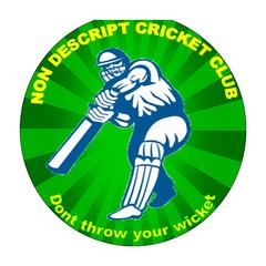 Non Descript Cricket Club