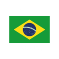 Дивизион Бразилия