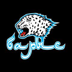 Barys Live